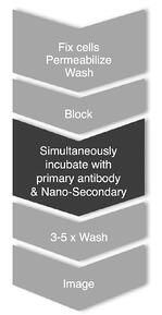 Blog_CTK_Nano-Secs_process flow