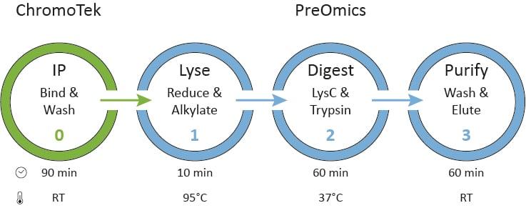 IP Kit_Procedure_circles-1.jpg