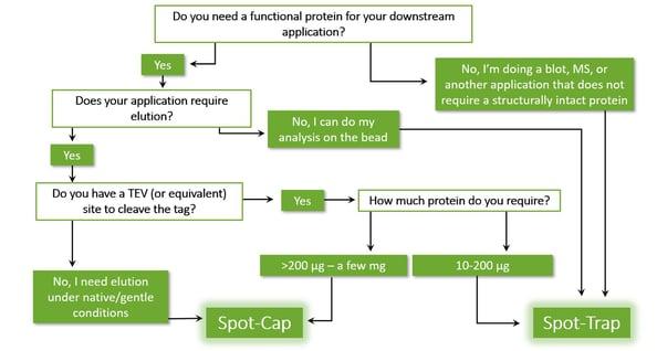 Spot-Cap or Spot-Trap Bog Decision Process